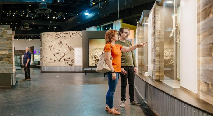 Two people looking at a museum exhibit