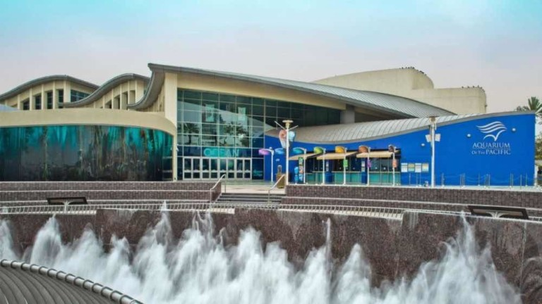 aquarium of the pacific join 365 tickets Online Ticketing Platform