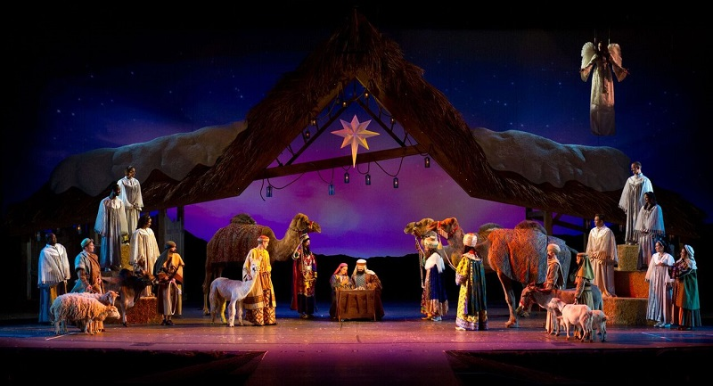 O Wondrous Night Seaworld Christmas