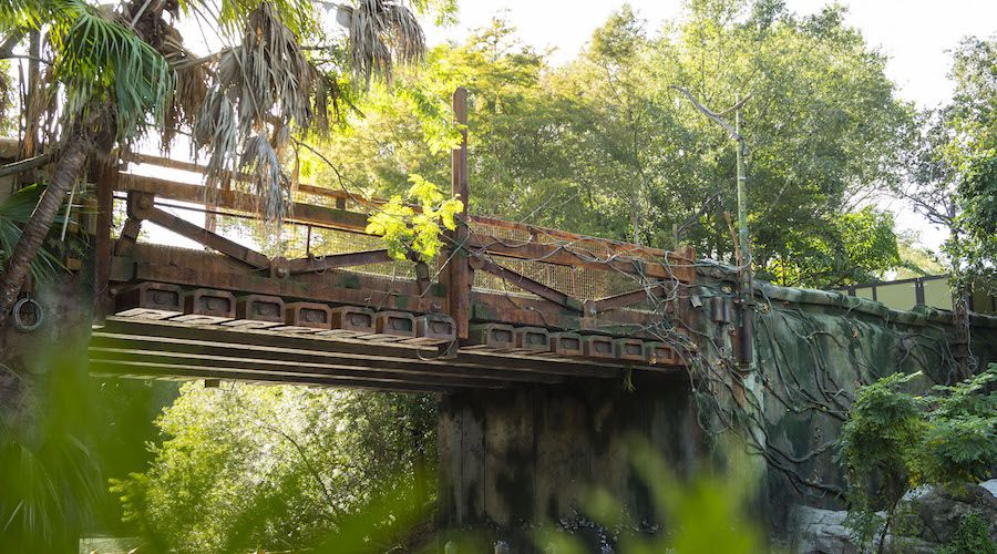 bridge pandora world of avatar