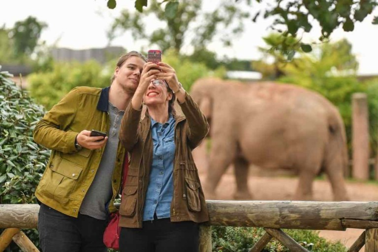 couple take selfie at chester zoo