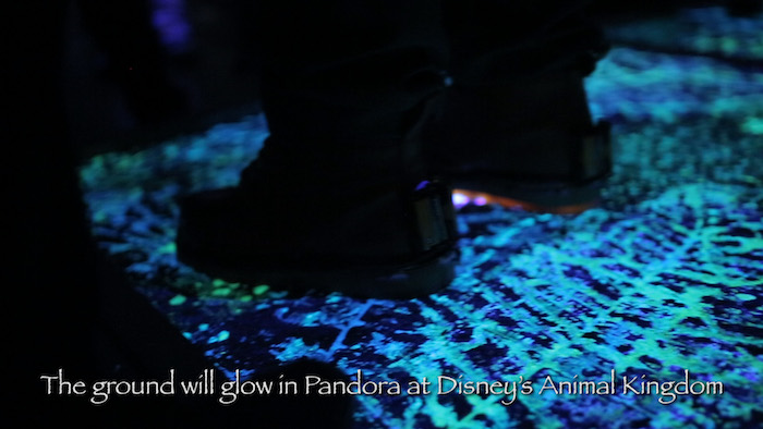 Pandora World of AVATAR Glowing ground Disney