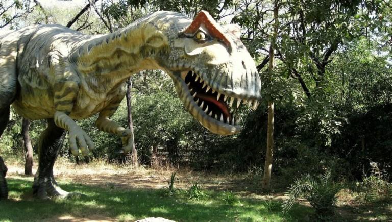 allosaurus model fossil museum india gujurat