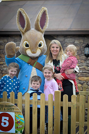 willow activity farm PeterRabbit-family