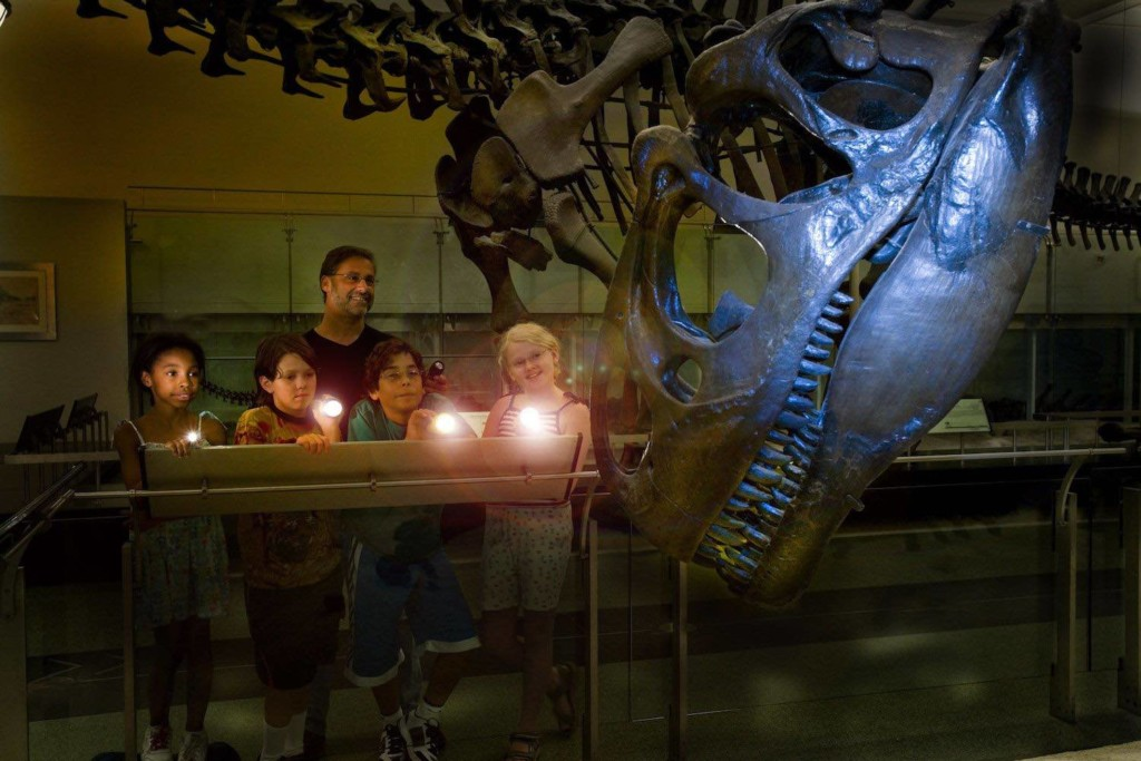 sleepver with dinosaurs at amnh american museum of natural history