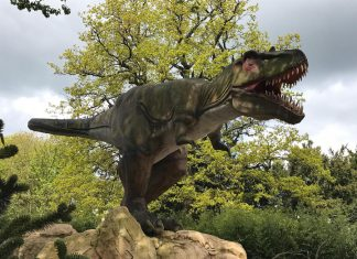 Land of the Living Dinosaurs West Midlands Safari park