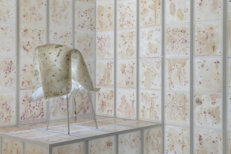 Scent-sational Anicka Yi: Body odour and ant pheromones at the Guggenheim