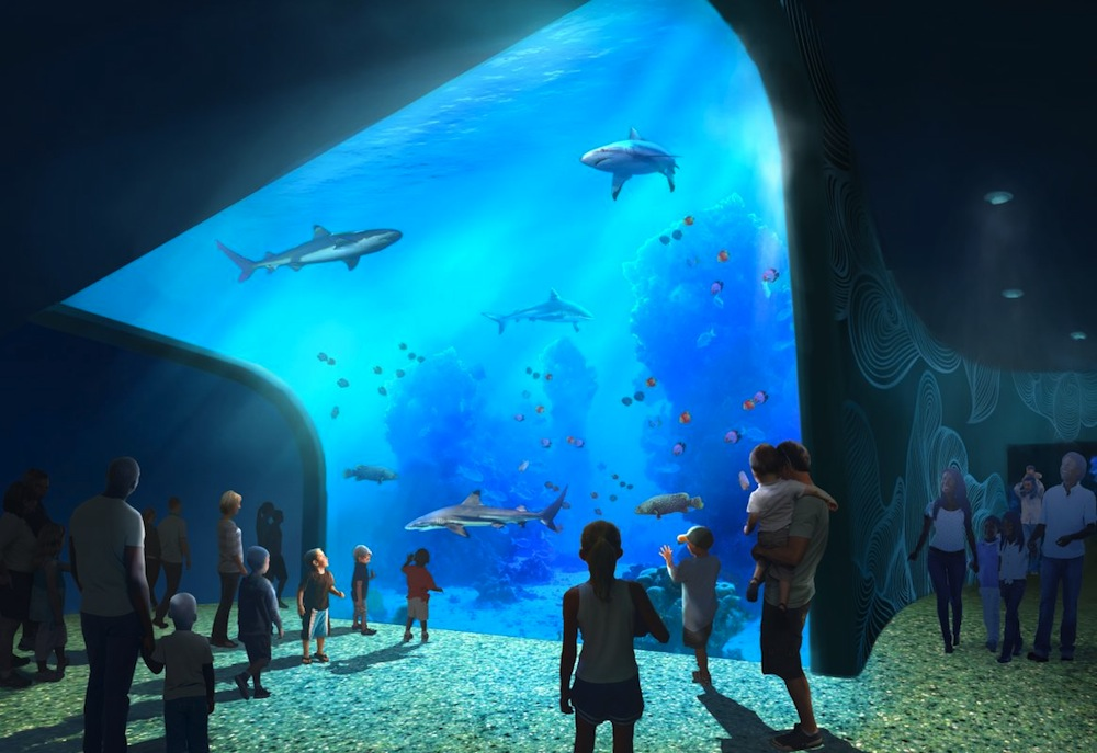 St Louis Union Station Aquarium Opening Summer 2019 Blooloop