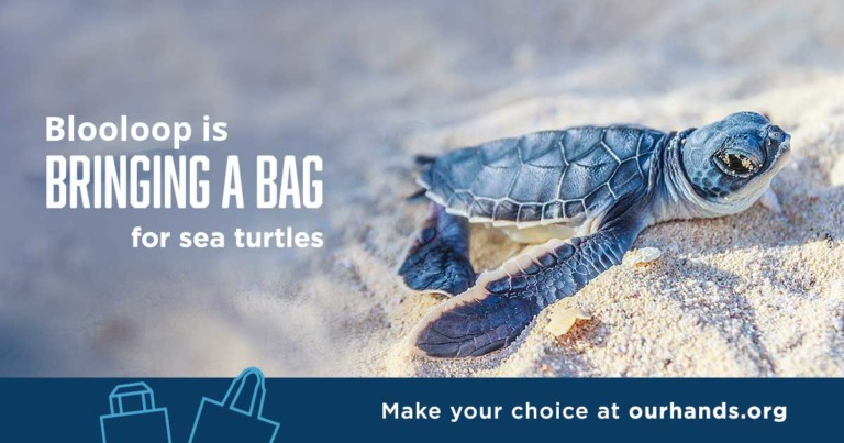 in our hands - 19 of America's top aquariums to phase out plastic products