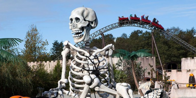 tema design by mk illuminations skeleton with rollercoaster