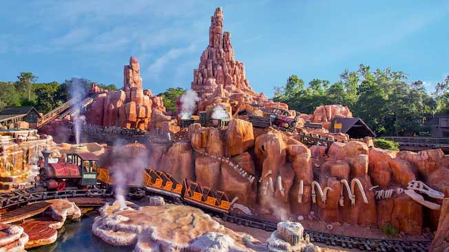 rollercoaster can help pass kidney stones l- big thundder mountain railway disney magic kingdom