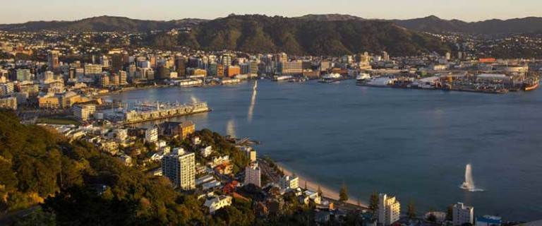 wellington city council approved zip lines