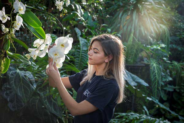 Jenny-Forgie-putting-the-finishing-touches-to-the-diaplays-at-Kews-Orchid-Festival