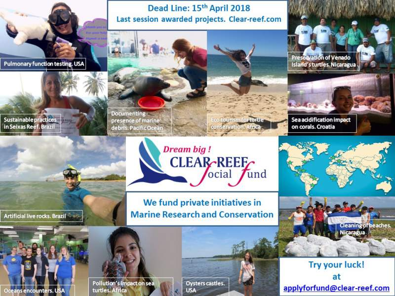 examples of conservation projects funded by clear reef