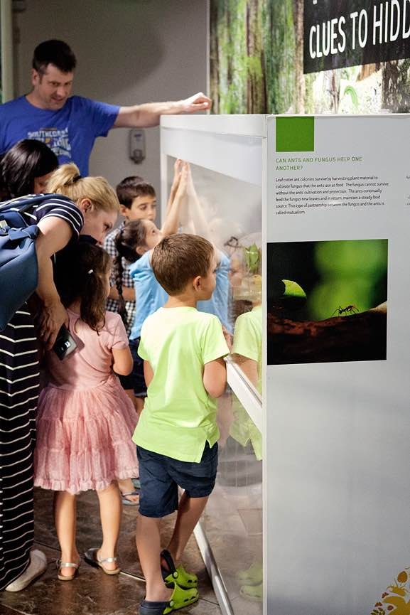 education at the green planet