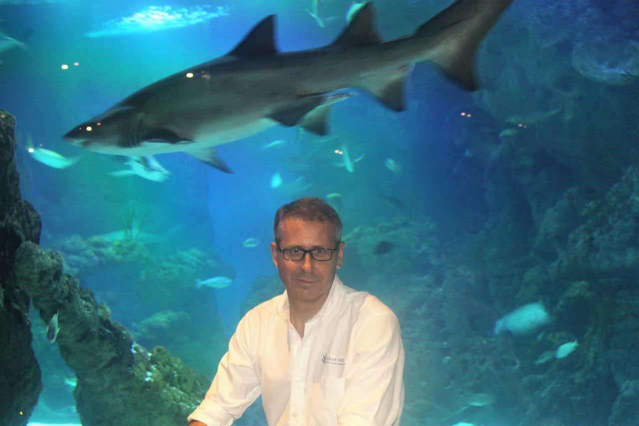 Philippe de lacaze clear reef