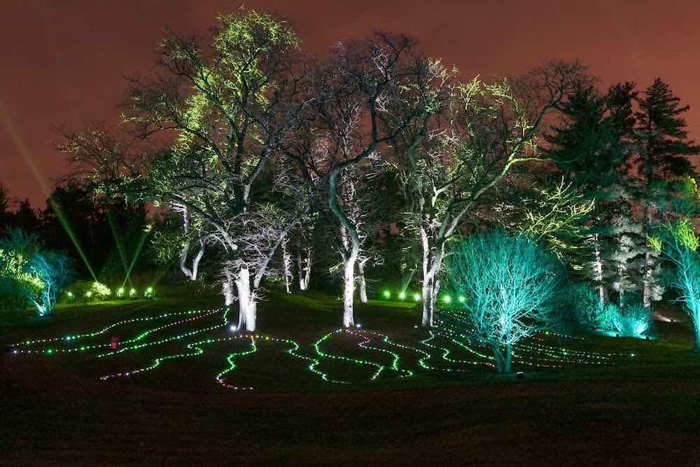 Symphony Woods. morton-arboretum-illumination-seasonal-events