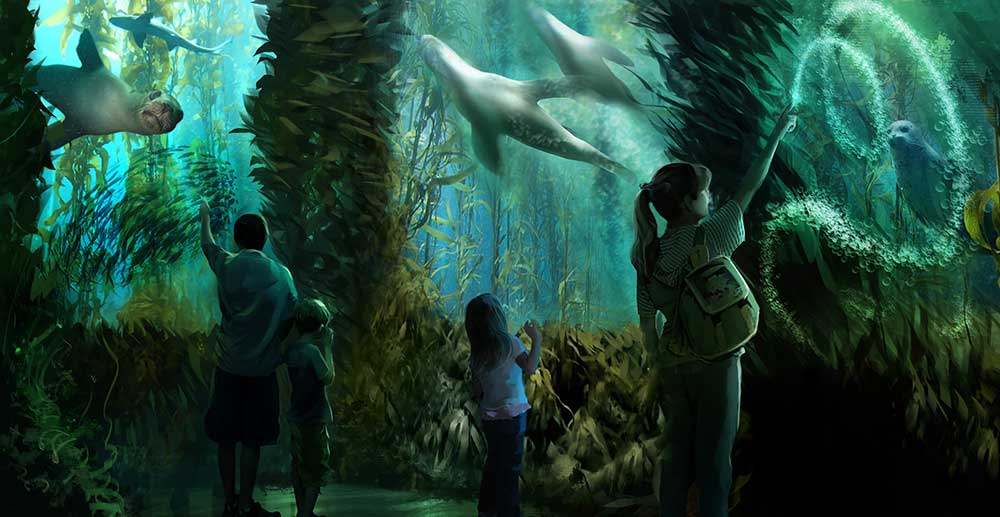 national geographic encounter sealion interaction