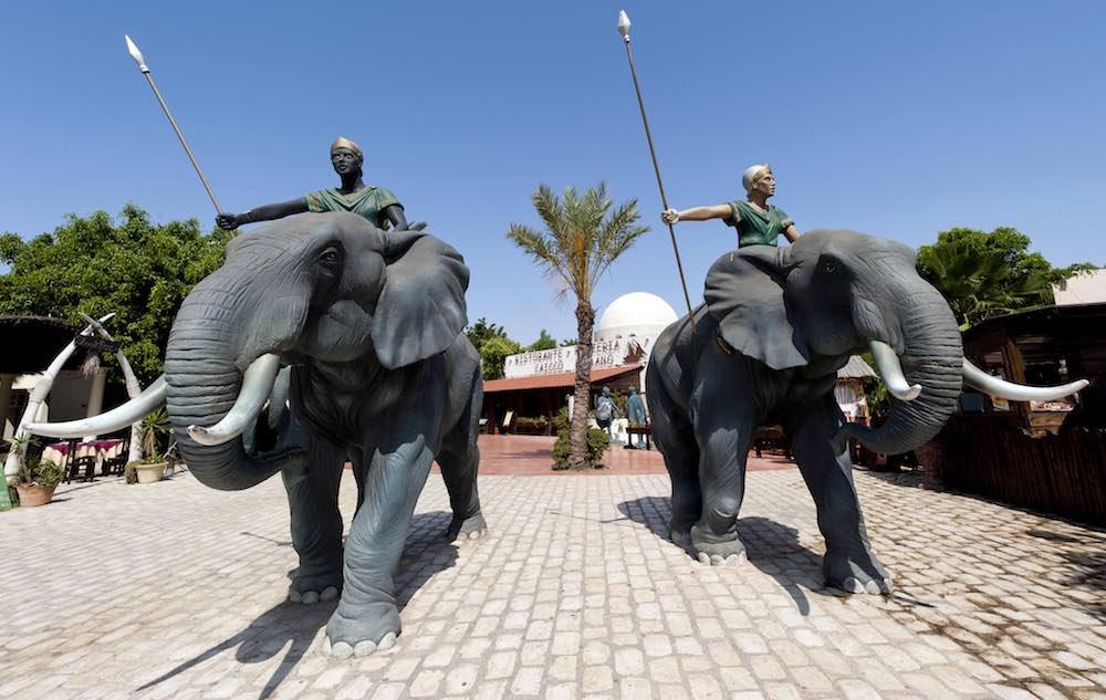 elephants at carthageland tunisia