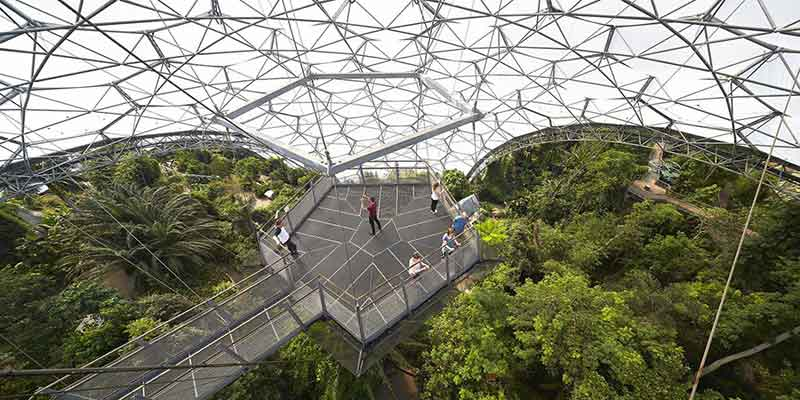 rainforest lookout hufton and crow eden project biome