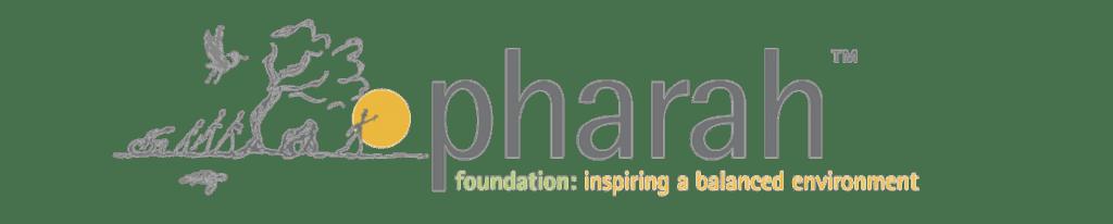 Pharah Foundation Inspiration
