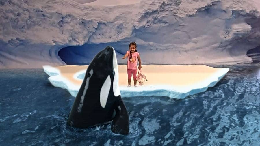 Little girl interacting with killer whale in augmented reality