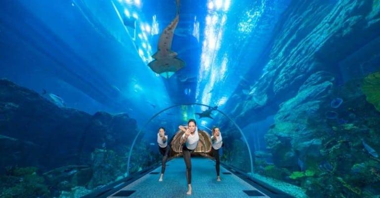 underwater yoga at Dubai Aquarium