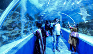 VGP-marine kingdom aquarium visitors india.jpg