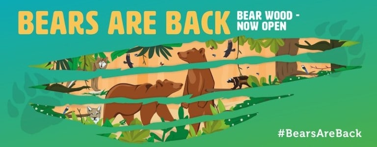 bear wood wild place project bristol