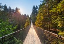 Gateway Ticketing Systems provides new solution for Capilano Suspension Bridge Park