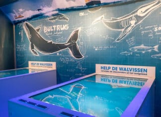 Leisure Expert Group designs new Sonar Station Exhibit at Wildlands Adventure Zoo