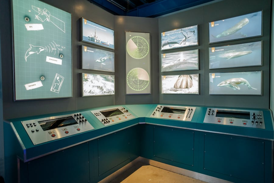 guests at Sonar Station, Wildlands Adventure Zoo, can guide whales to safety in a new interactive exhibit by Leisure Expert Group