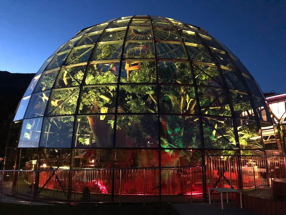 Dreamwood theme park Mriya resort tree in dome