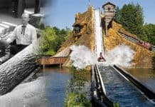 Interlink log flume evolution
