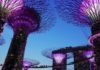 Gardens by the Bay Singapore COVID-19 attractions news