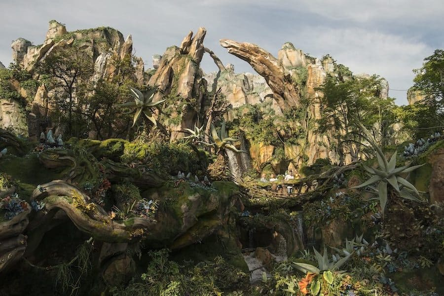 Disney-Animal-Kingdom-Pandora-Avatar experience concept attractions