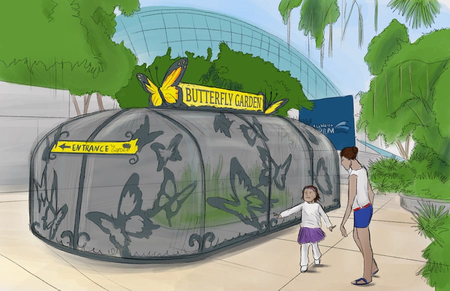 Florida Aquarium_Butterfly Garden