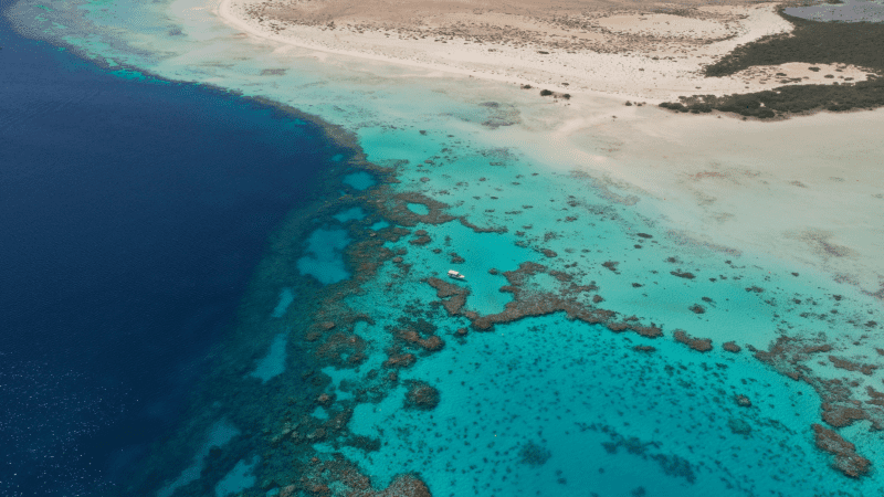 Drone footage of the Red Sea Project site