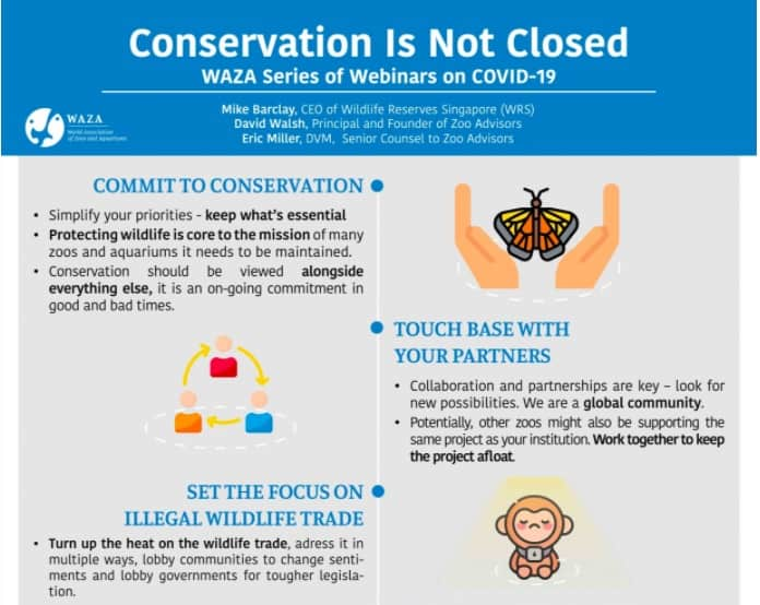 WAZA conservation COVID webinar - news of how the attractions industry is covering coronavirus