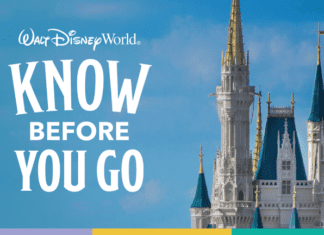 Walt Disney World know before you go poster