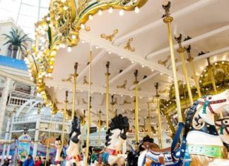Lotte World carousel covid-19