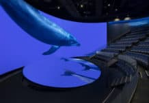 Aquarium of the Pacific / Pacific Visions 7thSense Design