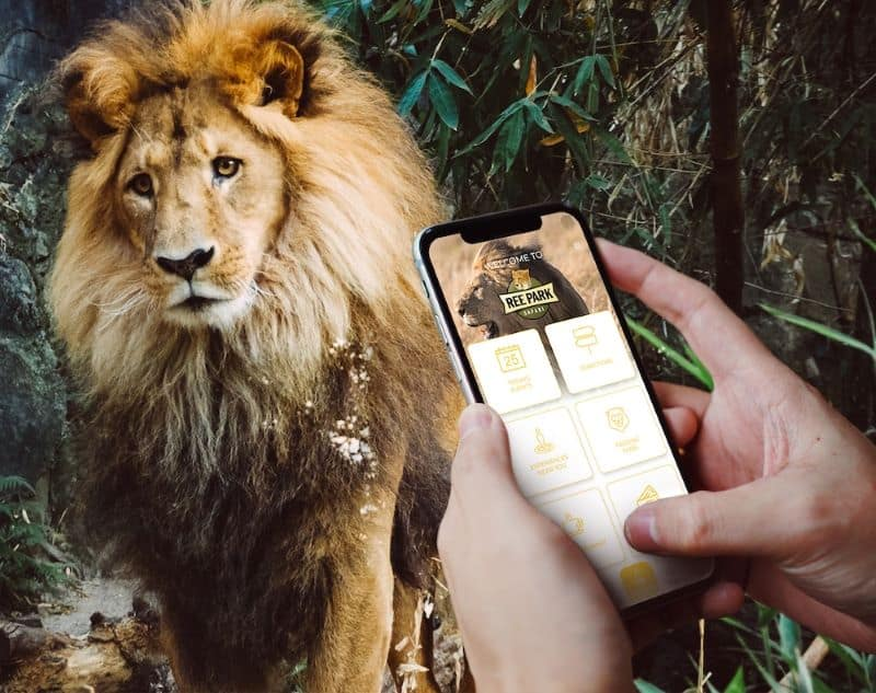aratag app in front of a lion