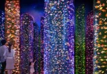 Art Aquarium becoming permanent next-gen attraction in Tokyo