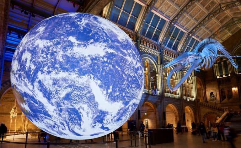 natural history museum london earth and whale most visited