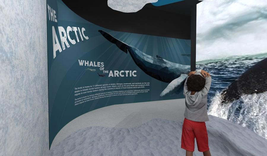 Arctic concept reefLIVE Belfast
