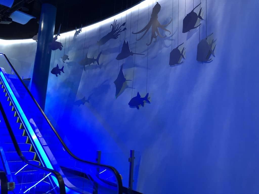 Mississippi aquarium escalator
