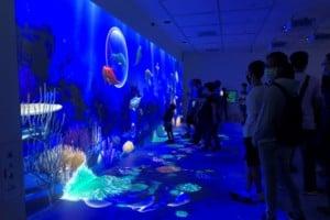 Xpark Aquarium Christie