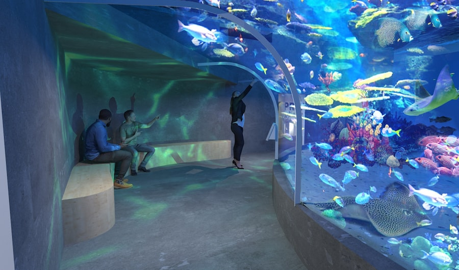 reefLIVE aquarium concept underwater tunnel