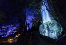 teamLab creates outdoor digital art exhibition at Mifuneyama Rakuen Park